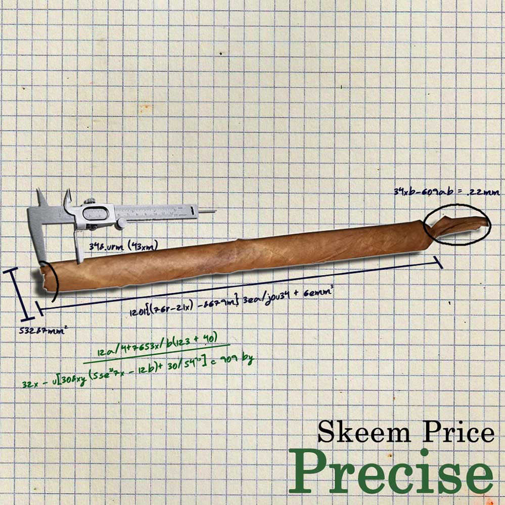 Precise (Digital 12) — Skeem Price — UNDR RPBLC Daily